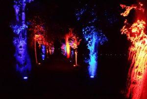 Veranstaltungshighlights